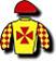 Australian Racing Institute