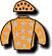 Equestrian Racing Star