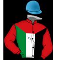Sh Sultan bin Zayed Al Nahyan