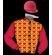 Qatar Racing Limited & China Horse Club