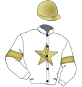 Touch Gold Racing (Fanciful)