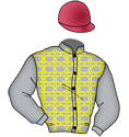 Al Shaqab Racing, WinStar Farm et al