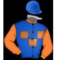 LLP Performance Horse, LLC